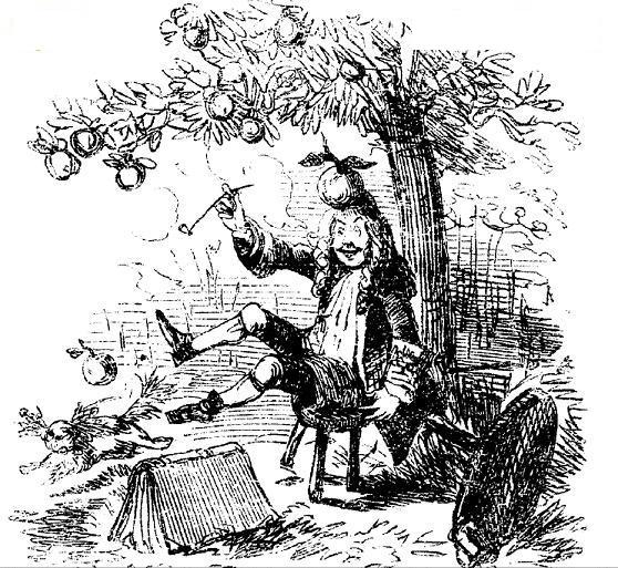 Isaac Newton Coloring Page Apple Falling From Tree